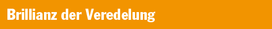 /fileadmin/user_upload/bulletpoints_02_brillianz_der_veredelung.jpg